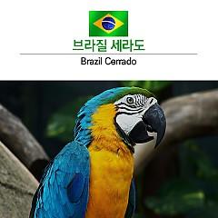 싱글오리진 브라질 세라도